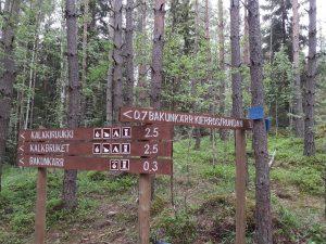 Vägskäl i Sibbo storskogs nationalpark: Stigen till Kalkbruket skiljs från Bakunkärrsrundans stig.